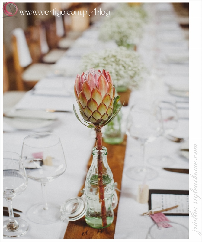 Protea Exotic And Spectacular Flower For Decoration