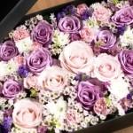 kwiaty w pudełkach. Blog Vertigo